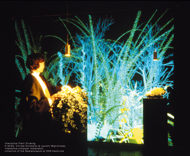 Christa Sommerer & Laurent Mignonneau: Interactive Plant Growing, Installationsansicht 1992.